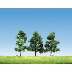 Lot de 3 arbres fruitiers